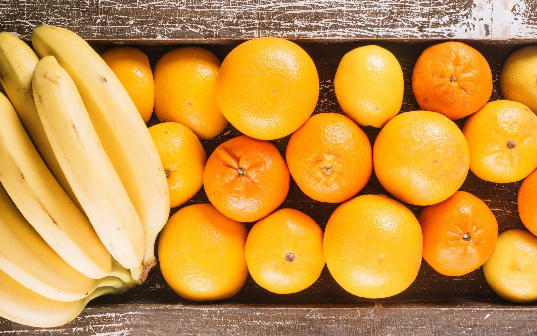 Alimentazione e princìpi nutritivi